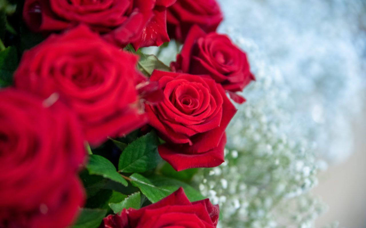 Bouquet de rose et gypsophile